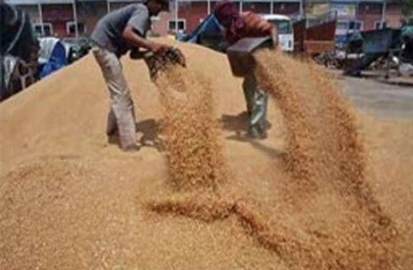 गेंहू और गन्ने के भुगतान को लेकर किसान परेशान, सरकार के आदेश का भी नहीं कोई असर