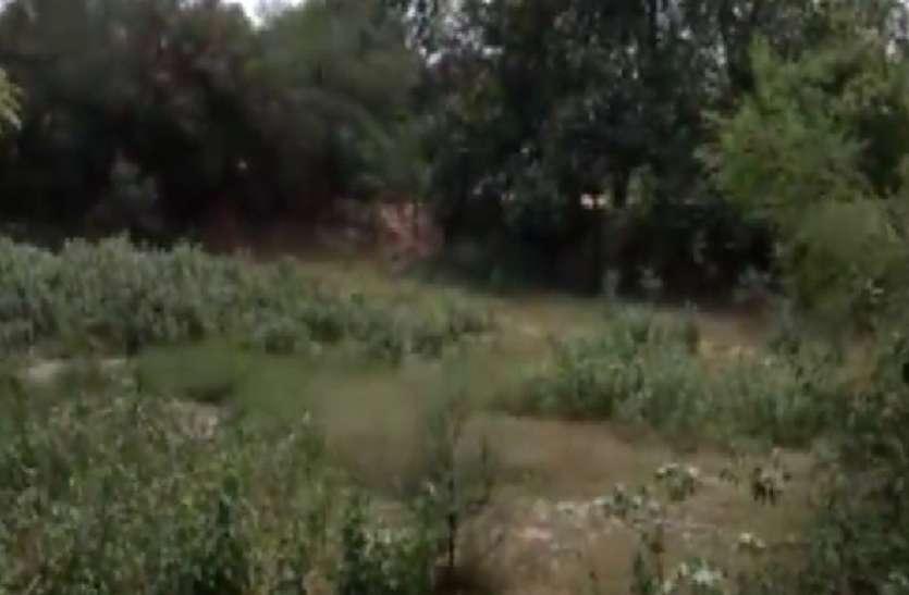 जल संकट से यूपी के इस इलाके में मचा हाहाकार, वीडियो में देखें ग्रामीणों का दर्द