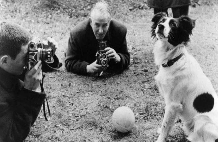 FIFA WC 2018 : जब एक कुत्ते ने बचाई इंग्लैंड और फीफा की इज्जत, जानें क्या था पूरा माजरा