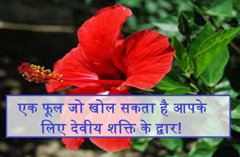 एक फूल जो खोल सकता है आपके लिए देवीय शक्ति के द्वार!