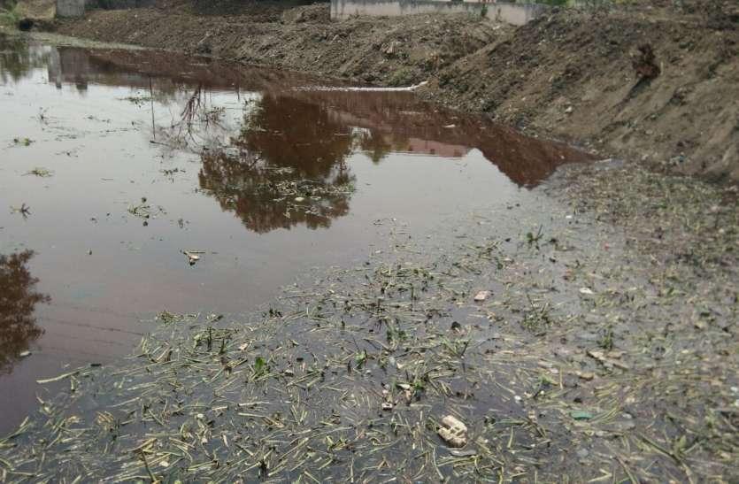 निगम नही कर रहा नदी सफाई में सहयोग