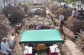 ज्यादा गन्ना उत्पादन करने के बाद भी सरकार की इस पॉलिसी से बर्बाद हो रहे हैं गन्ना किसान