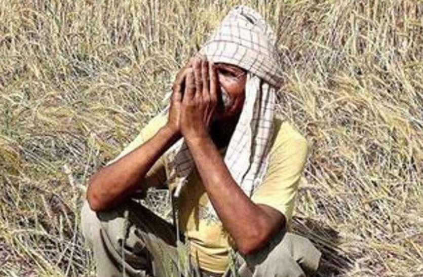 राजस्थान के इन जिलों के किसान नहीं ले सकेंगे सहकारी बैंक से loan, जानिए यह है वजह