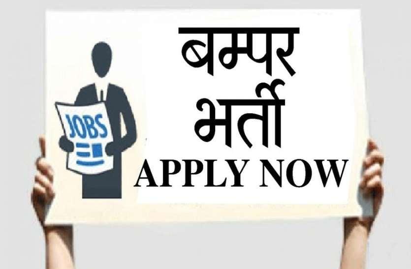 रोजगार : 24 साल बाद नेहरू युवा केन्द्र में निकली बंपर भर्ती, यहां से करें आवेदन ...
