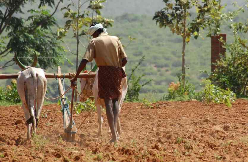 खेती और खाद्यान्न की प्रणाली में बदलाव के लिए कृषि अर्थशास्त्रियों का मंथन