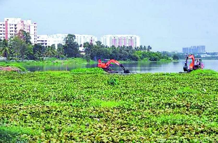 रिपोर्ट : बेलंदूर झील की सफाई है महज दिखावा
