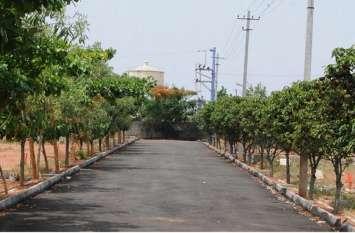 देश की पहली इको फ्रेंडली टाउनशिप:पेड़ों के नाम से मिलेगी सड़कों को पहचान