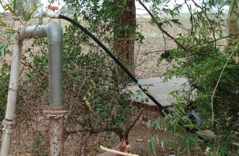 यहां खुद बाड़ ही खा रही है खेत, यहां विद्युत विभाग के कर्मचारी ही बिजली चोरी में लिप्त
