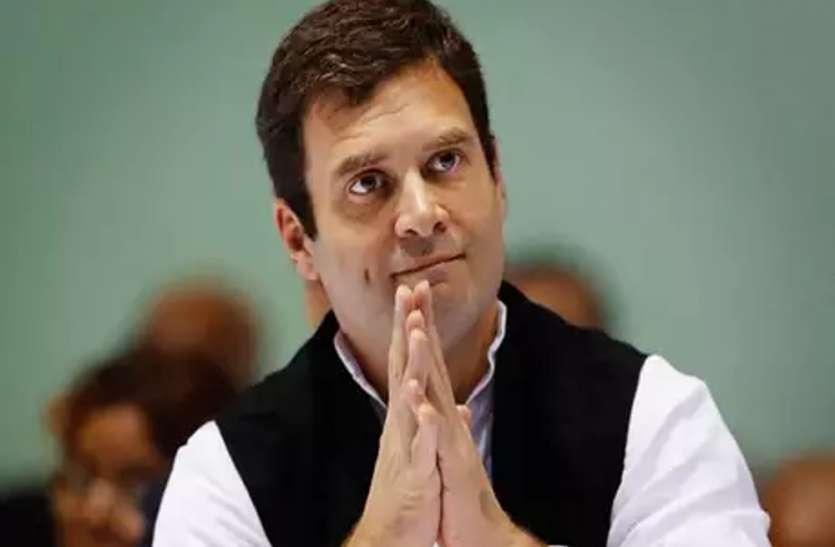 48 साल के हुए कांग्रेस अध्यक्ष राहुल गांधी, जाने उनके बारे में कुछ खास बातें