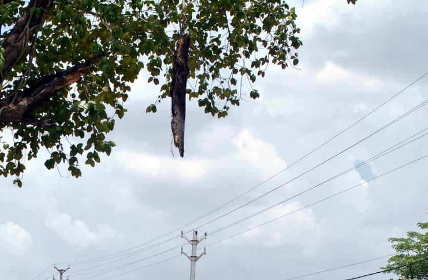 जमीन में प्लास्टिक की केबल देखने जा रहे आधा दर्जन लोगों पर बिजली का कहर, करंट से फूट गया पिकअप का टायर