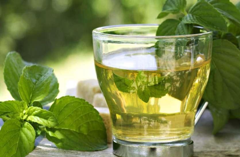 रसोई में इस्तेमाल पानी से उगाएं हर्बल पौधे