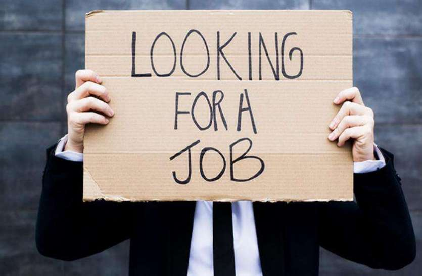 मप्र में बेरोजगारों की संख्या लाखों में, नौकरी मिली इस इतने को, चौंका देंगे ये आंकड़े