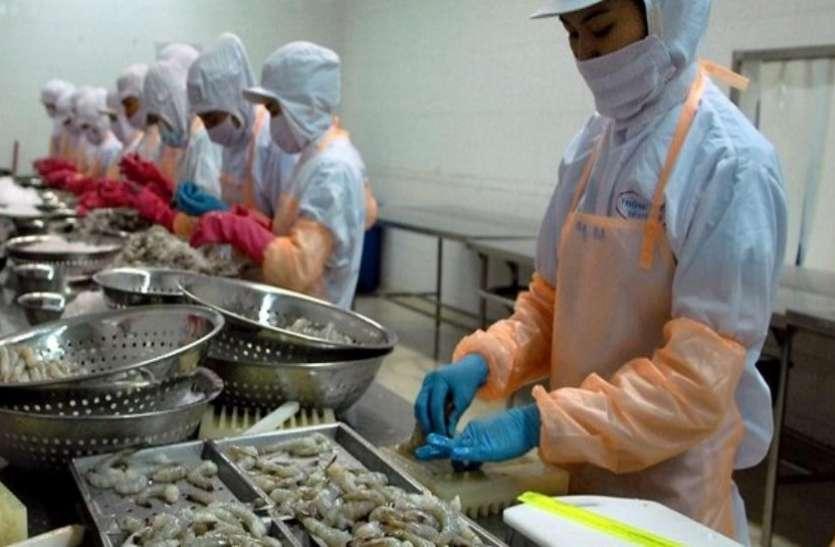 दुनिया के ये देश 45 हजार करोड़ रुपए की खा गए भारतीय मछली आैर झींगा
