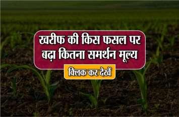 सरकार का बड़ा फैसला,खरीफ की इन 14 फसलों पर बढ़ाया गया समर्थन मूल्य, किसानों में खुशी