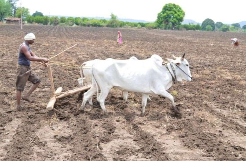 पंजीयन कराने किसान हो रहे परेशान