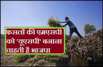 भाजपा फसलों की एमएसपी को 'यूएसपी' बनाने की कर रही तैयारी, जानें क्या USP