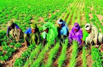 लाभकारी मूल्य बढ़ाने के बावजूद आखिर किसान क्याें हैं नाखुश