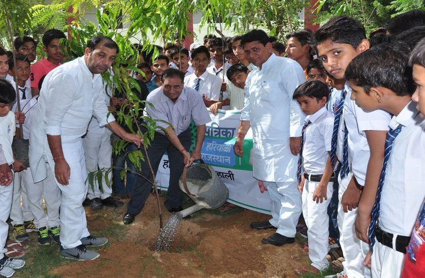 हरियालो राजस्थान अभियान के तहत रोपे गए पौधे; पीपल, अशोक और नीम, गुलाब भी शामिल