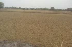 एमपी के इस जिले में बन रहे सूखे जैसे हालात, किसान परेशान, अब तक हुई महज दो फीसदी बोवनी