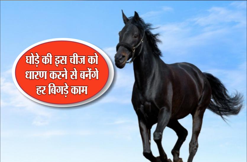 शनिवार के दिन इस घोड़े की इस चीज को धारण करने से हर काम में मिलती हैं सफलता