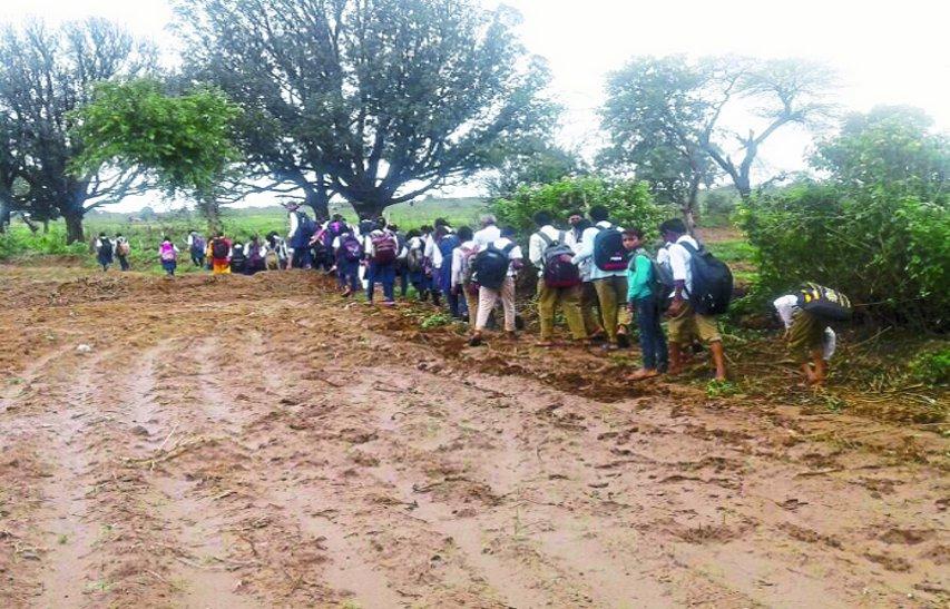 गांवों में बदहाल स्कूल पहुंच मार्ग, खेतों से होकर तय हो रहा स्कूलों का सफर