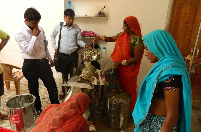 सीताफल ने बदली आदिवासी महिलाओं की तकदीर...उदयपुर की इस देन को पीएम मोदी ने भी सराहा