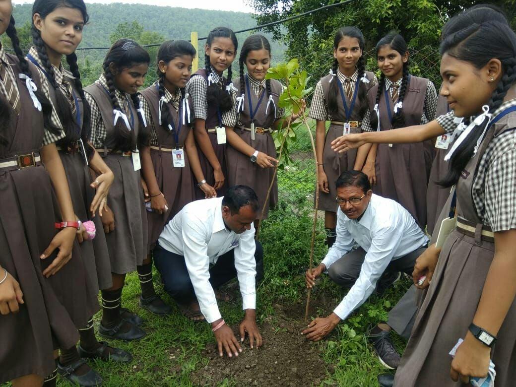 पौधे लगाकर लिया संरक्षण का संकल्प