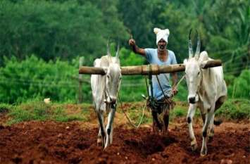 अब सेल्फी से जीतेंगे किसानों के दिल