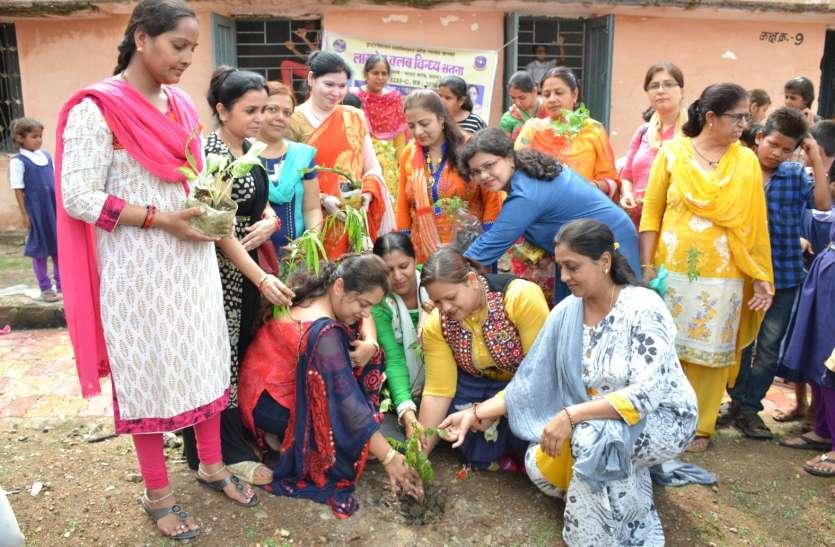 हरीतिमा के लिए बढ़ चला कारवां, यहां पढें किस तरह समाजसेवी संगठन patrika अभियान से जुड़ कर रहे पौधरोपण
