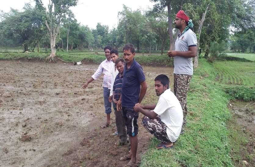 फैक्ट्री का जहरीला पानी खेतों तक पहुंचा, 20 एकड़ में फसल बर्बाद