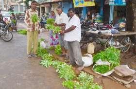 नीमच में मिल रहा महंगी सब्जियों का सबसे सस्ता पौधा