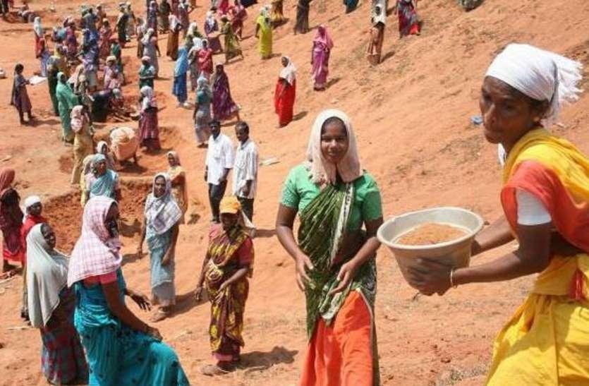 मनरेगा के सफल क्रियान्वयन में जिला पंचायत को प्रदेश में मिली दूसरी रैंक