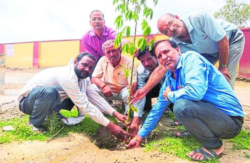 संस्कृत स्कूल में लगाए पौधे