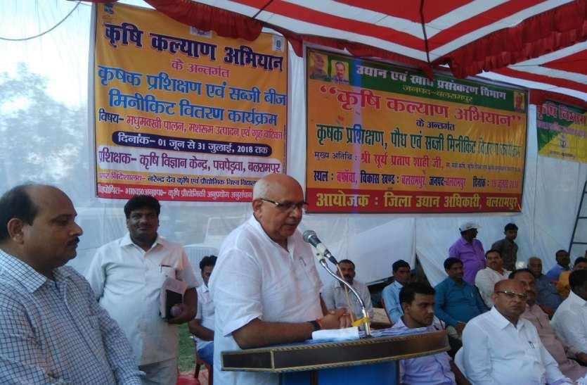 कृषि मंत्री ने गांव में लगायी चौपाल, सुनी समस्याएं, गिनाई उपलब्धियां