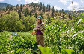 खेती में भी है जबरदस्त पैसा, बिना कुछ किए भी कमा सकते हैं लाखों हर माह
