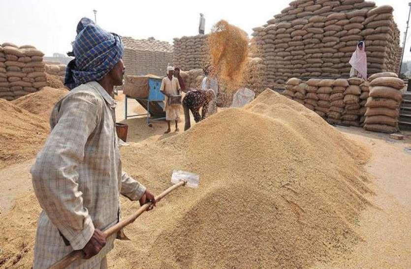 किसानों को नहीं मिला उपज खरीद का भुगतान, 1332 करोड़ के भुगतान का इंतजार