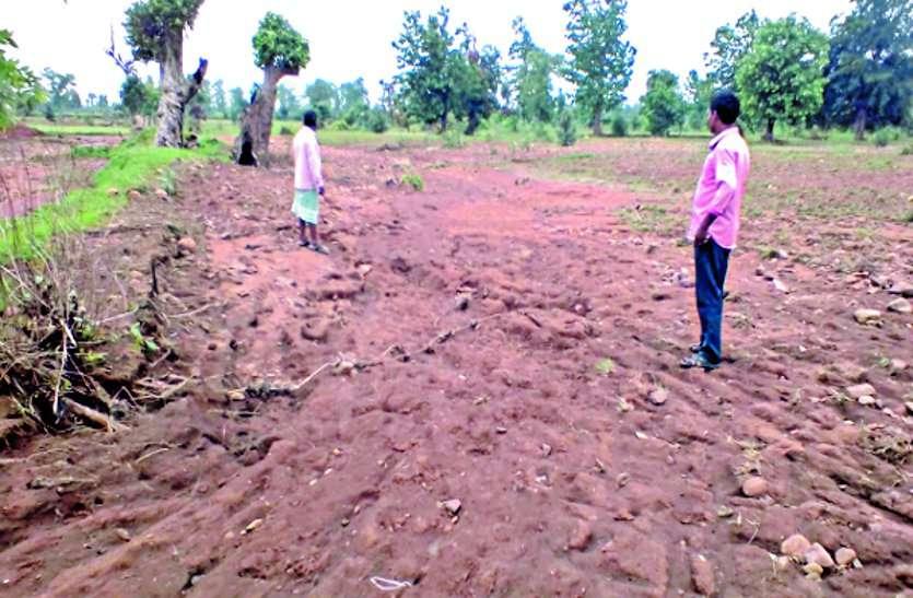 आमनेर की बाढ़ में बह गई डेढ़ दर्जन किसानों की फसल