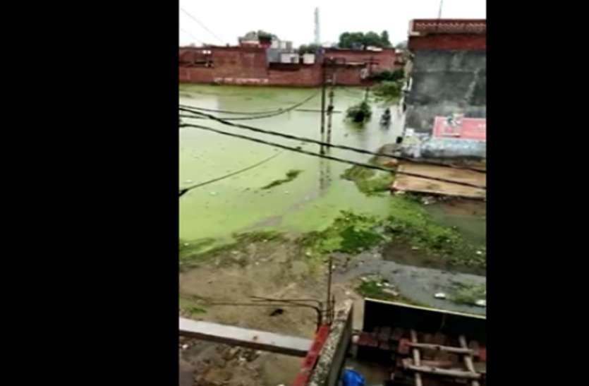 मानसून की पहली बरसात में नगर पालिका के वार्डों में हुआ भारी जलभराव