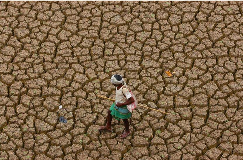 बिहार में सूखे के हालात, धान की बुआई प्रभावित
