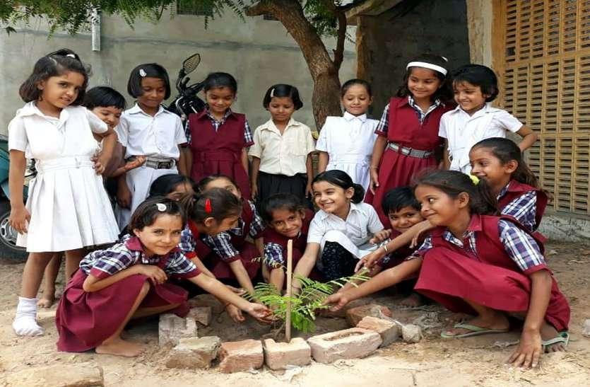 जगह-जगह पौधरोपण कर लिया पर्यावरण संरक्षण का संकल्प