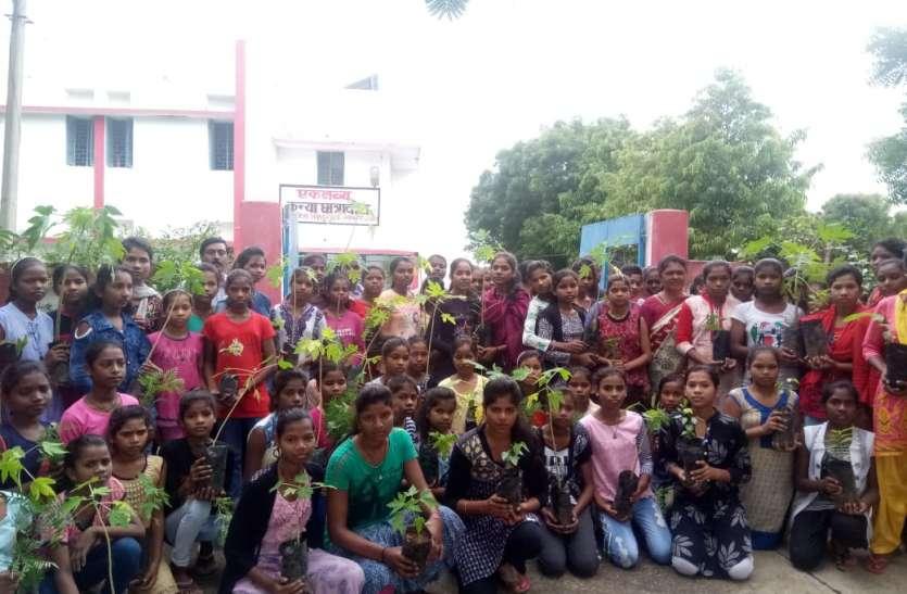 शिक्षा की पाठ्शाला में पर्यावरण संरक्षता का नैतिक दायित्व: प्रदूषण मुक्त परिसर बनाने नौनिहालों ने लगाएं 550 पौधे