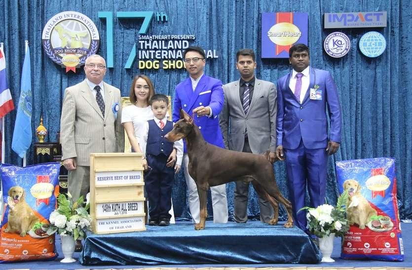 international dog show02