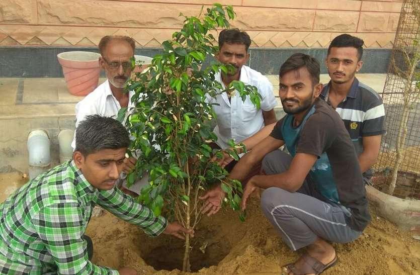 हरियाळो राजस्थान अभियान से प्रेरित, पौधे लगा दिया पर्यावरण संरक्षण का संदेश