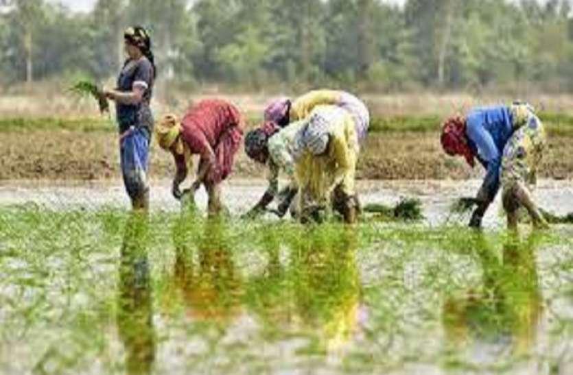 किसानों की आय दोगुनी करने में सबसे बड़े बाधक यह हैं