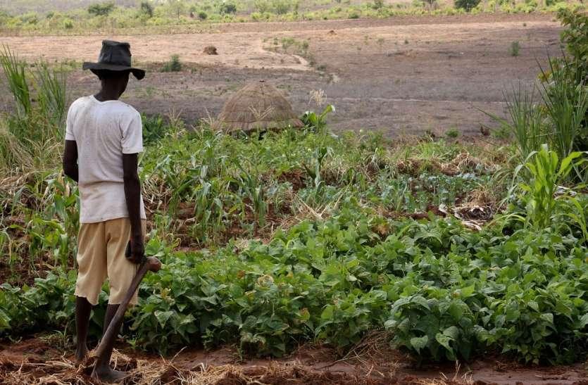 फसलों के खराब होने से किसान परेशान, सरकार के खिलाफ करेंगे आंदोलन!