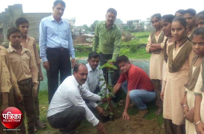 हरयाळो राजस्थान : पौधरोपण और पर्यावरण संरक्षण से ही सुरक्षित है जीवन