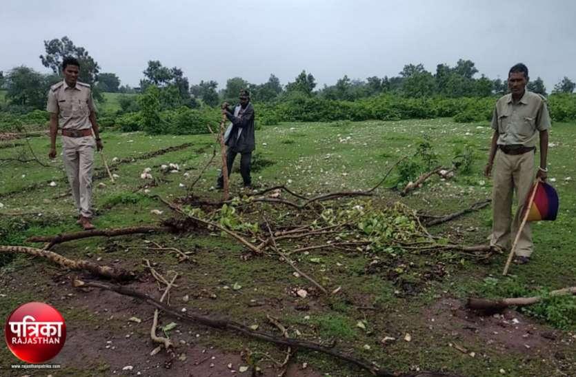 बांसवाड़ा : वन विभाग की पड़त भूमि पर कर दी बुवाई, 38 जनों के खिलाफ मामला दर्ज