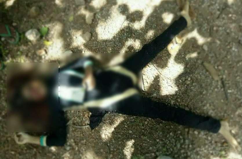 झारखंड से शिक्षक ने भांजे के साथ लड़की का कट्टे की नोंक पर किया था अपहरण, फिर CG में लाकर मार दी गोली