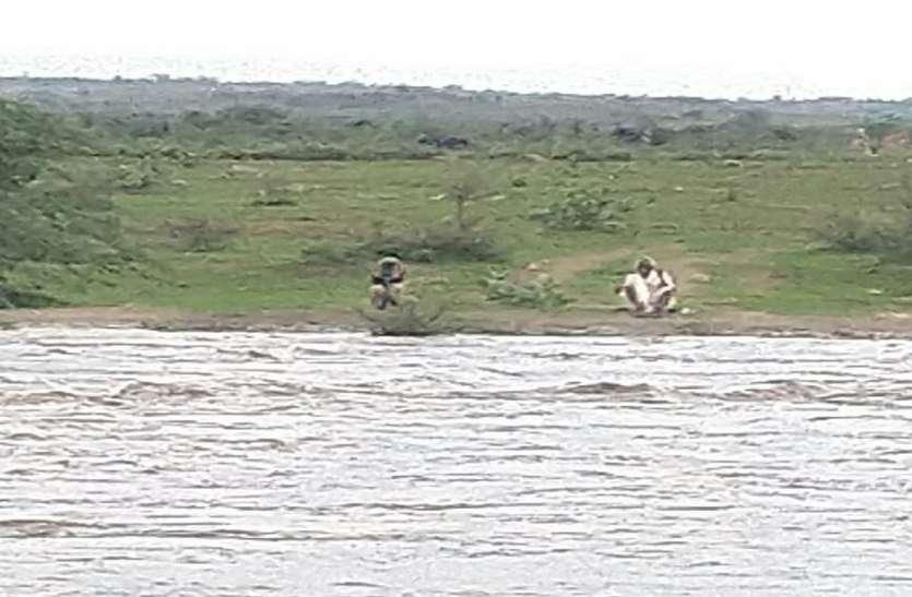 seap river sheopur