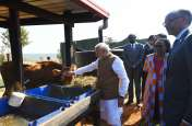 पीएम मोदी ने रवांडा को दिए 200 गायें, चारा भी खिलाया